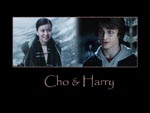 Wallpaper Cho and Harry